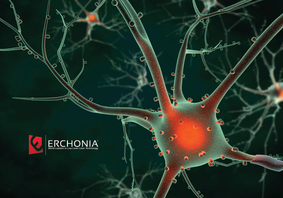 Erchonia:  Back in Balance - America's Health Epidemic from a Neurological Point of View