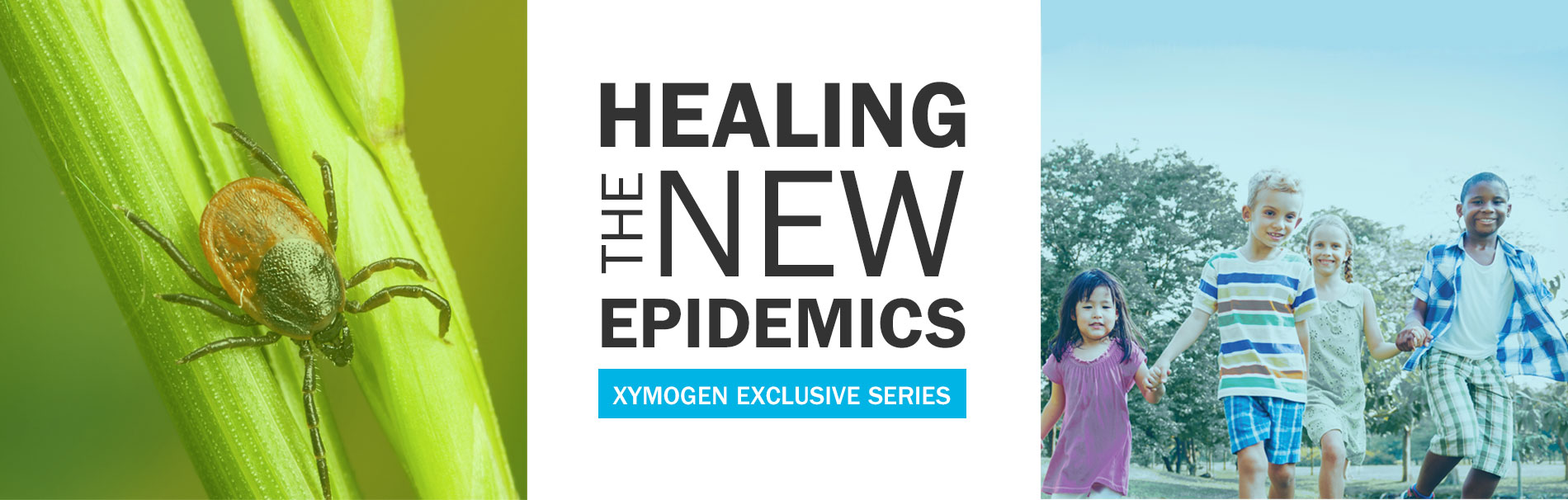 healing the new epidemics